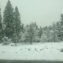 Snow on our drive North